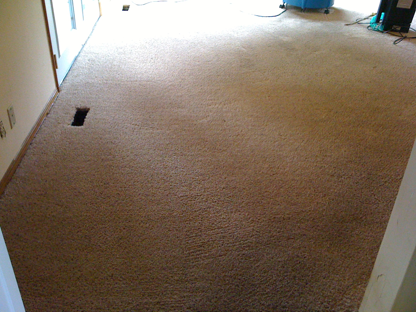 carpet cleaning portland filthy dirty carpet clean