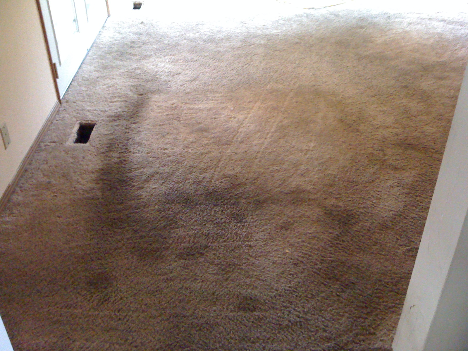 carpet cleaning portland filthy dirty carpet