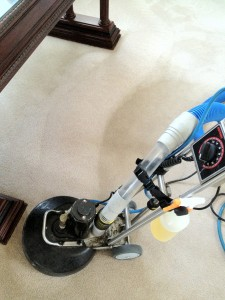 Dirty Nylon Carpet Saved